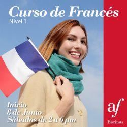 INICIO CURSO DE FRANCÉS – NIVEL  1
