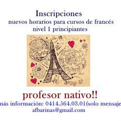 Cursos de Francés. Profesor nativo.