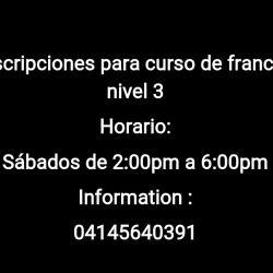 CURSO DE FRANCÉS NIVEL 3